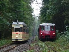 tw-215-lvt-772-140772-141-obs_bei-reinhardsbrunn-bf-_21-09-2014_c-quass