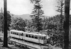 twsb-5280-reinhardsbr-t-1928-braeunlich-slg-pkalbe