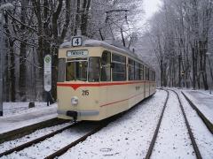 Tw 215, Reinhardsbrunn Bf., 25.01.2014 (C) Schneider