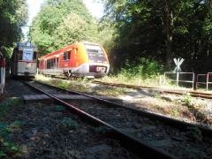 HTw 215 und VT 641 (DB) vor Reinhardsbrunn Bf., 01.10.2011 (C) Schneider