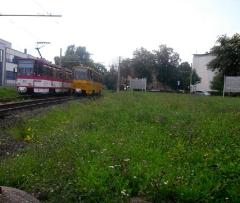 Tw 310II und 319 in der WS Gotha Ostbahnhof, 14.08.2010