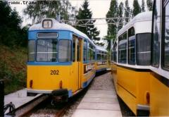 Triebwagen 202 im Depot. (7. August 1997)