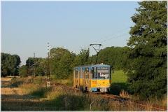 Hier geht es vom Boxberg abwärts. Tw 301 bei Leina. (5. September 2005)