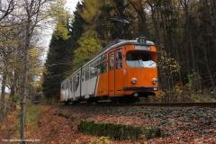Tw 522 - Oldie im Wald (2013)
