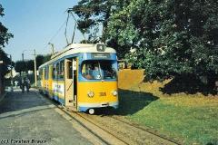 Triebwagen 396 an der Hst Walterhausen Bahnhof. (Oktober 1991)