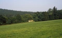 Kurz vor Tabarz verlässt die Waldbahn dann den finsteren Wald. (14.07.1987)