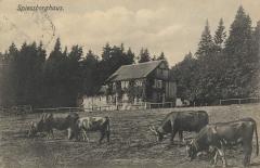 Spießberghaus um 1900