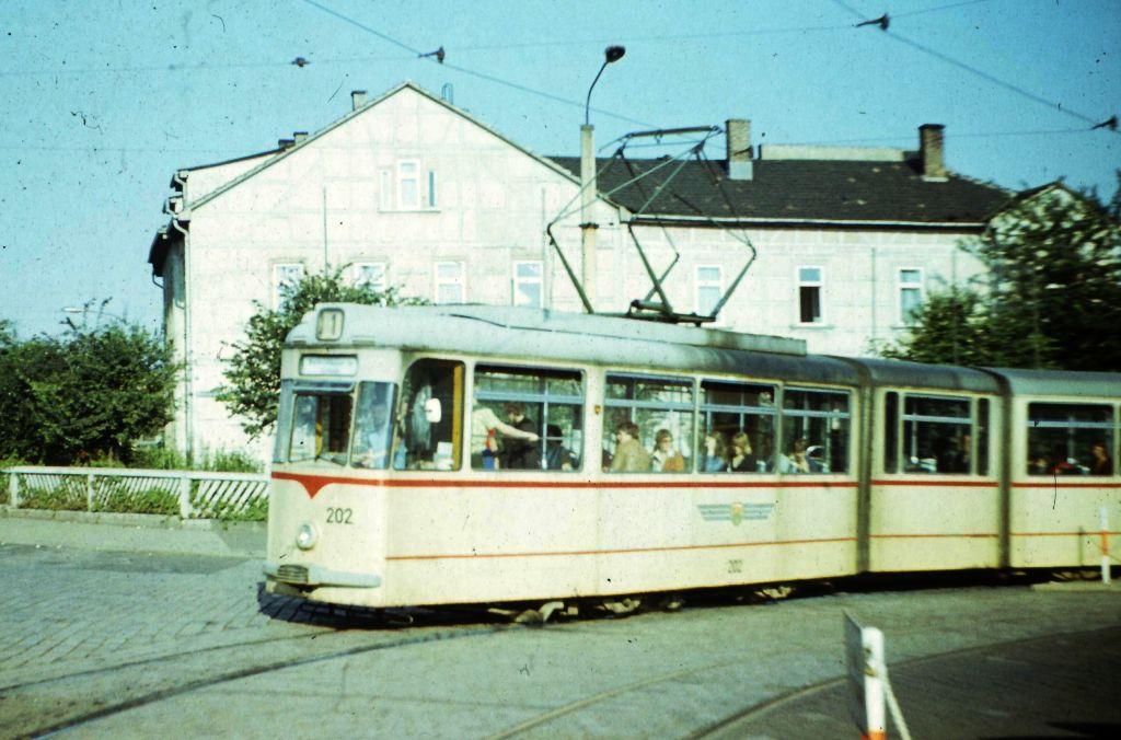 Tw 202 | 1978 | (c) Kalbe