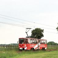 Triebwagen-Galerien aktuell
