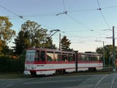 Tw 313 | 2011 | (c) Quass