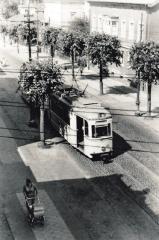 Tw 43 | 1964 | (c) Kalbe