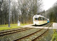 HTw 215, HTw 39, Reinhardsbrunn Bf., 24.02.2007