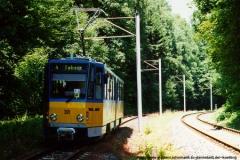 Triebwagen 301 nahe der Rheinhardsbrunner Teiche. (17. Juli 1999)