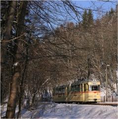 Tw 43 in Reinhardbrunn (FoSoFa 2005)