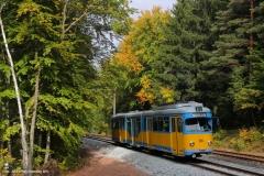 TW 505 - Thüringerwaldbahn . Herbstfarben (2013)