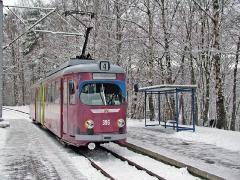 Triebwagen 396 am Hp Reinhardsbrunn Teiche. (28. Dezember 2004)