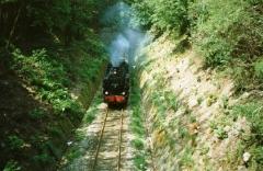 dr_91-6580-zwischen-reinhardsbrunn-friedrichroda-tunnelausfahrt-friedrichroda_1992_c-stefan-marx