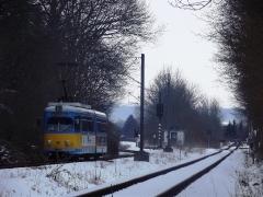 tw-442_schnepfenthal_23-03-2013_c-hartung