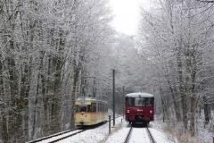 Tw 215 und EBS 772 345 zwischen Reinhardsbrunn und Schnepfenthal, 25.01.2014 (2), (C) Quaß