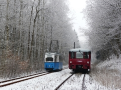 Tw 39 und EBS 772 345 zwischen Reinhardsbrunn und Schnepfenthal, 25.01.2014, (1), (C) Quaß