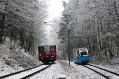 Tw 39 und EBS 772 345 zwischen Reinhardsbrunn und Schnepfenthal, 25.01.2014, (3), (C) Quaß