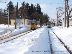 319-303-tabarz1-2010-02-16