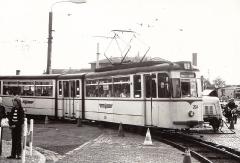 Tw 204 | 1979 | (c) Kalbe